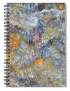 Water Whimsy 179 Spiral Notebook