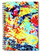 Water Whimsy 180 Spiral Notebook