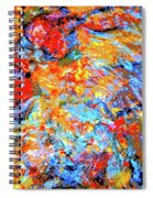 Water Whimsy 183 Spiral Notebook