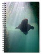 Water World Spiral Notebook