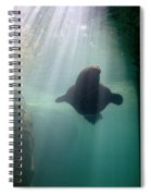 Water World Spiral Notebook