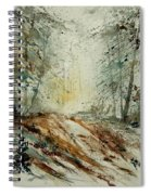 Watercolor  907013 Spiral Notebook