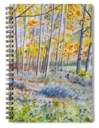 Watercolor - Colorado Autumn Forest And Landscape Spiral Notebook