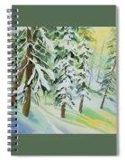 Watercolor - Colorado Winter Tranquility Spiral Notebook