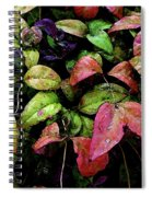 Watercolor Colorful Leaves After A Shower 1771 W_2 Spiral Notebook