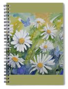 Watercolor - Daisies And Common Blue Butterflies Spiral Notebook