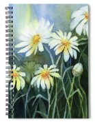 Daisies Flowers  Spiral Notebook