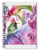 Watercolor - Frilled Coquette Hummingbird With Colorful Background Spiral Notebook