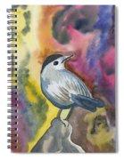 Watercolor - Gray Catbird Spiral Notebook