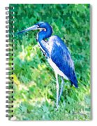 Watercolor Heron In Grass Spiral Notebook