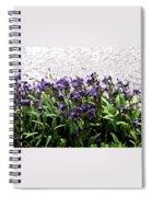 Watercolor Iris  Spiral Notebook