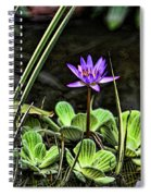 Watercolor Lily Spiral Notebook