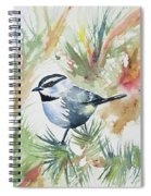 Watercolor - Mountain Chickadee And Pine Spiral Notebook