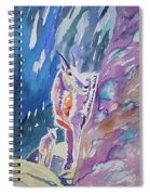 Watercolor - Mountain Goat With Young Spiral Notebook