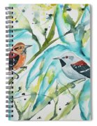 Watercolor - Ornate Antwren In The Bamboo Spiral Notebook