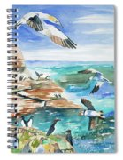 Watercolor - Seabirds Of The North Atlantic Spiral Notebook