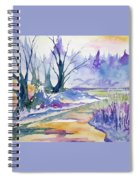 Watercolor - Stream And Forest Spiral Notebook