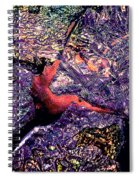 Waterdrop Abstract Spiral Notebook