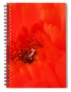 Waterdrop In The Pistils Spiral Notebook