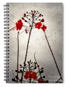 Watered Down Memories Spiral Notebook