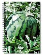 Waterelons In A Vegetable Garden Spiral Notebook