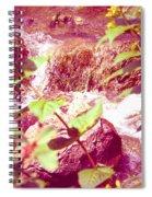 Waterfall Garden Pink Falls Spiral Notebook
