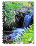 Waterfall In The Fern Garden Spiral Notebook