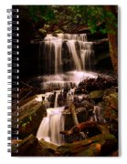 Waterfall Mcconnells Mills State Park Spiral Notebook