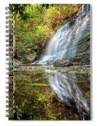 Waterfall Reflections Spiral Notebook