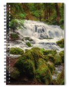 Waterfall Reverie Spiral Notebook