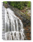 Waterfall With Green Leaves Spiral Notebook