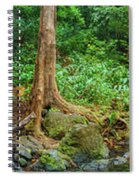 Waterfalls And Banyans Spiral Notebook