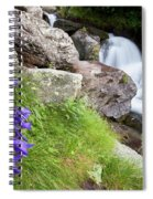 Waterfalls And Bluebells Spiral Notebook