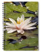 Waterlily On The Water Spiral Notebook