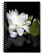 Waterlily  Reflection Spiral Notebook
