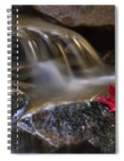 Watermark Spiral Notebook