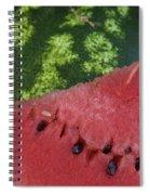 Watermelon Slice Spiral Notebook