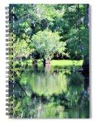 Waterscape #1 Hillsborough River Spiral Notebook