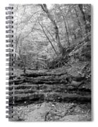 Waterscape In Bw Spiral Notebook