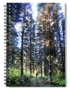 Waterton Valley Trail Detail - Glacier National Park Spiral Notebook