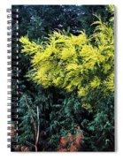 Wattyl - Wild Flower Of Australia Spiral Notebook