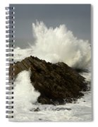 Wave At Shore Acres 2 Spiral Notebook