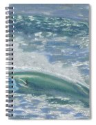Waverider Spiral Notebook