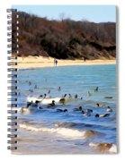 Waves Of Ducks Spiral Notebook