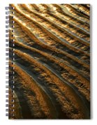 Waves Of Gold Spiral Notebook