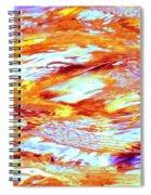Waves Of Light Spiral Notebook