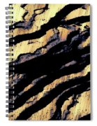 Waves Of Time 3 Spiral Notebook