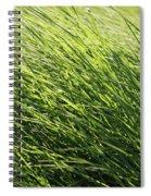 Waving Grass Spiral Notebook