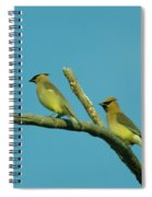 Wax Wings  Spiral Notebook