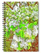 Waxleaf Privet Blooms On A Sunny Day Spiral Notebook